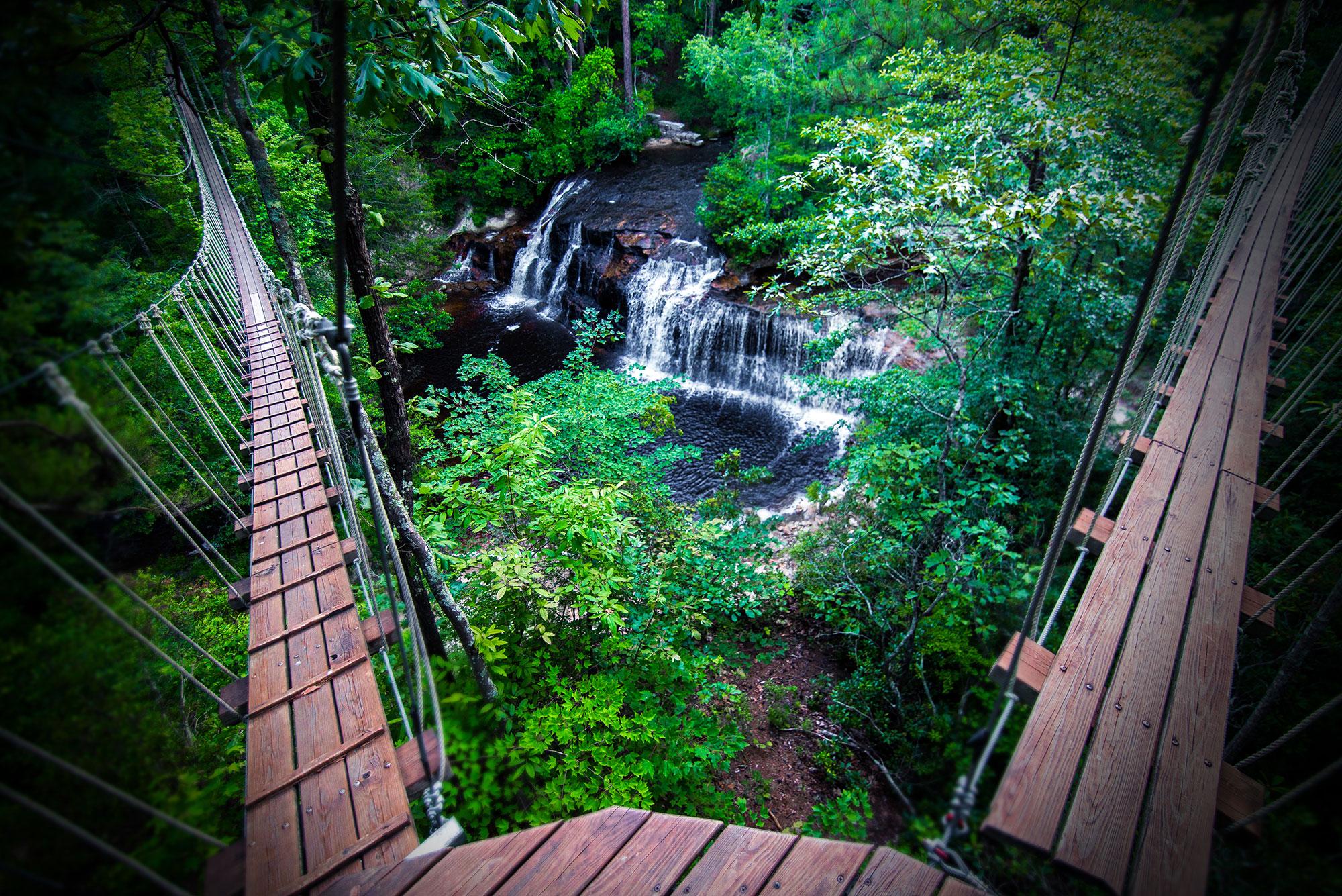 Carvers Falls Near Fayetteville NC