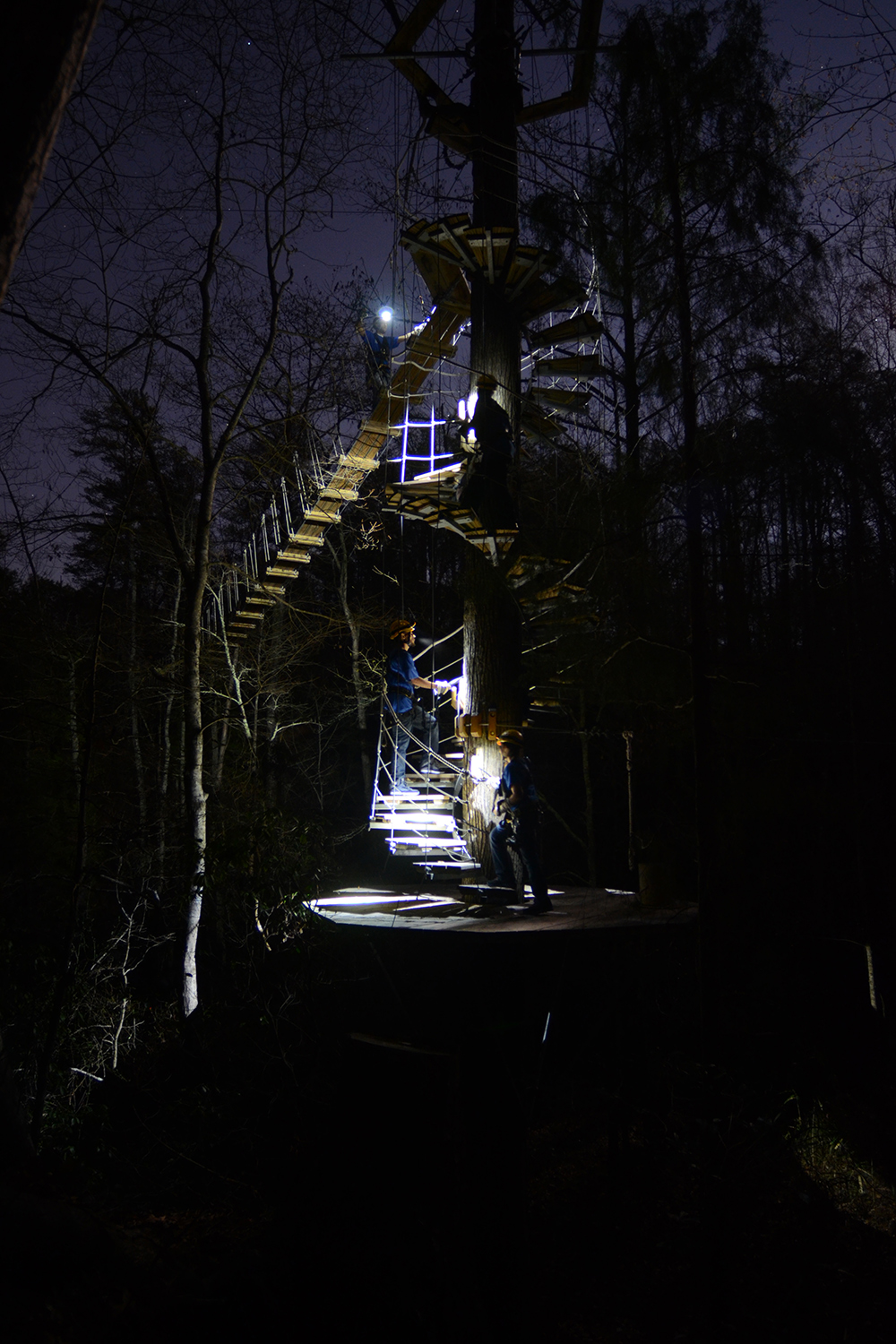 NightQuest Treetop Excursion