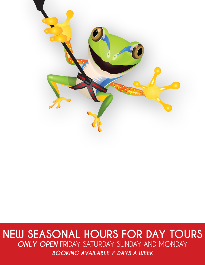 ZipQuest Waterfall & Treetop Adventure - Zip Line North Carolina