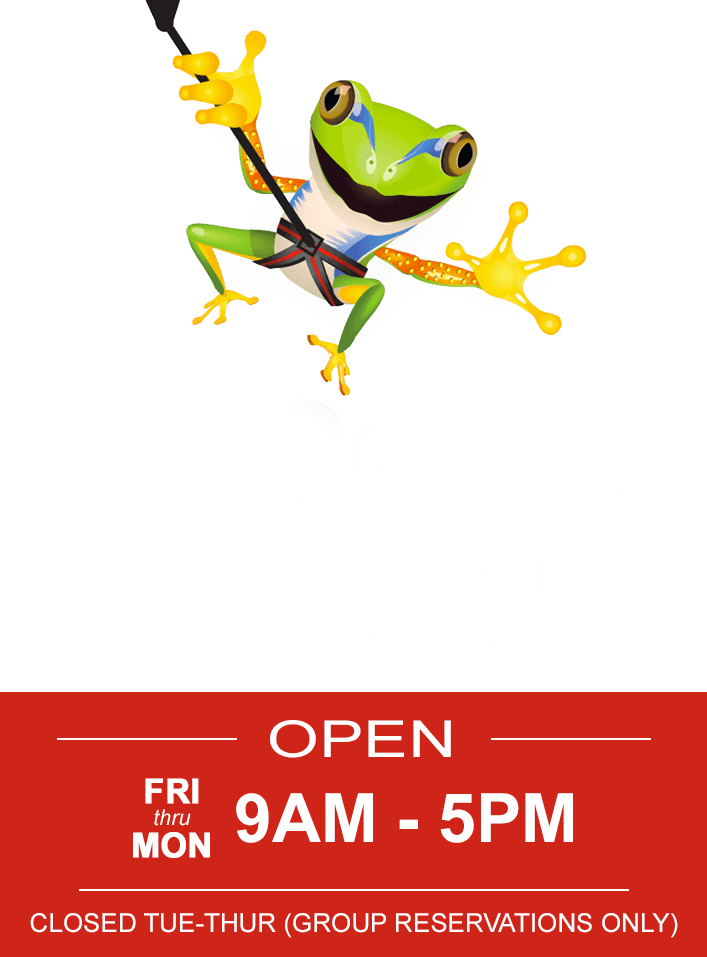 ZipQuest Waterfall & Treetop Adventure